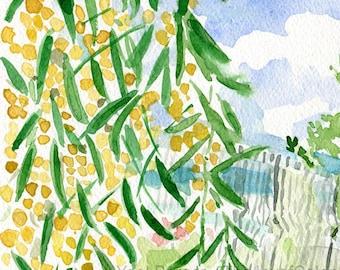 Mimosa bloom art print/ beach landscape print/ mimosa watercolor print/ beach landscape painting/ interior design/ mimosa and beach print