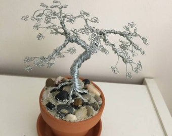 Silver Seaside Bonsai Tree