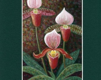 """Tropical Lady Slippers, 5""""x 7"""" print with 8""""x 10"""" mat"""