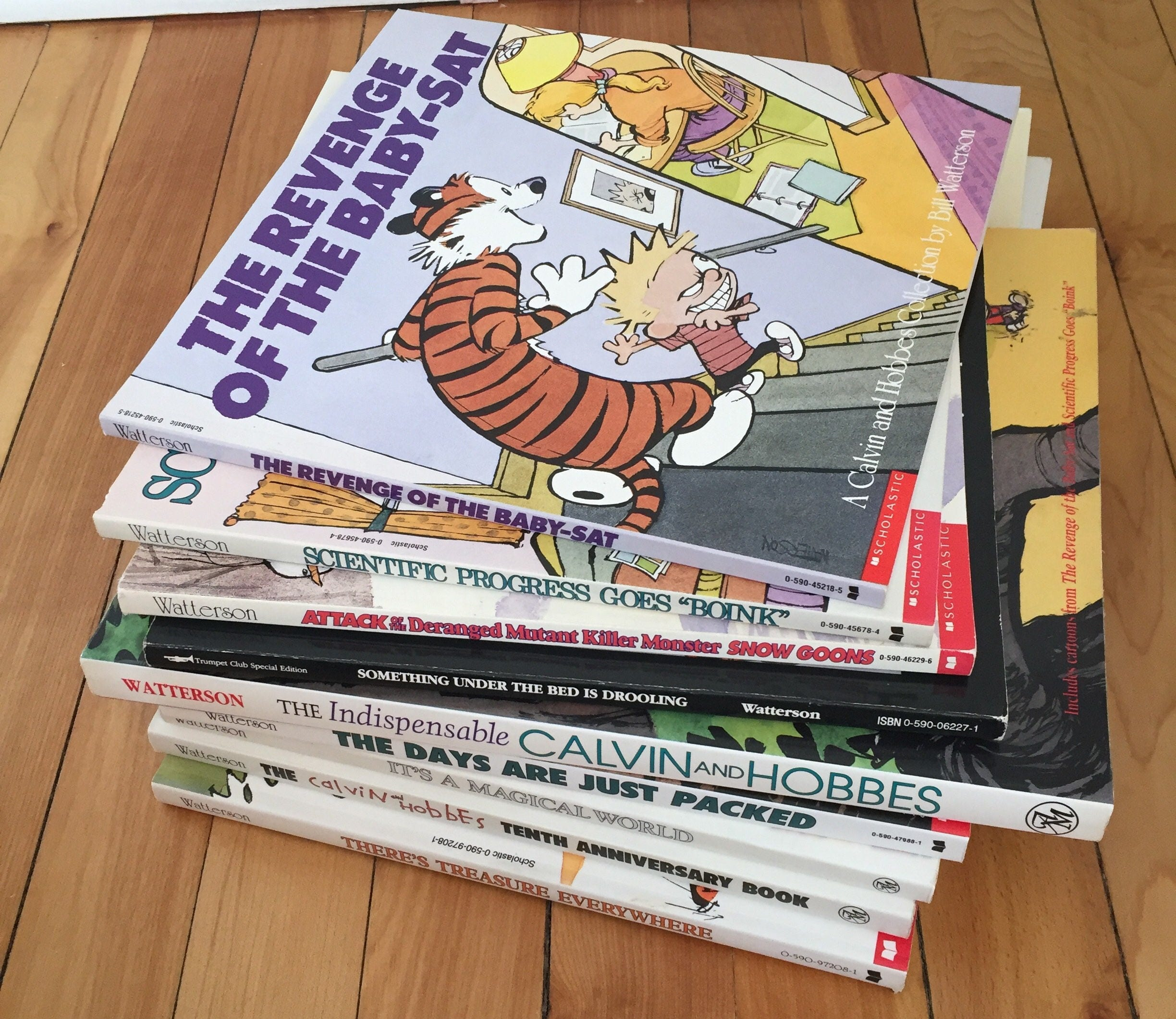Vintage 1990s Calvin and Hobbes Comic Book Graphic Books Bill