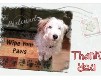 Thank You | Dog Cards | Thank You Cards | Eco-friendly | Vintage | Rescue Dog | Funny Cards | Cute Dogs | Blank Cards | Stationary | Donate