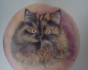 Watercolor painting by Persian cat