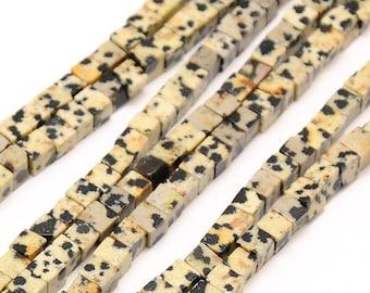 10 x 4mm DALMATIAN Jasper cube beads