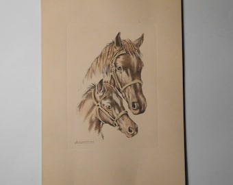 Free shipping-Engraved horses, signed by the engraver, vintage engraving