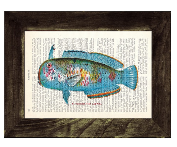 Book Print Dictionary or Encyclopedia Fish Page Print- Book print Hawaiian Fish(Lae Nihi) Print on Vintage Bookart art SEA071
