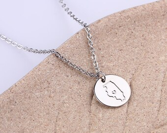 Illinois Necklace - Custom State Love Necklace - Illinois State Necklace - Personalized Disc Necklace - Silver ,Gold or Rose Gold