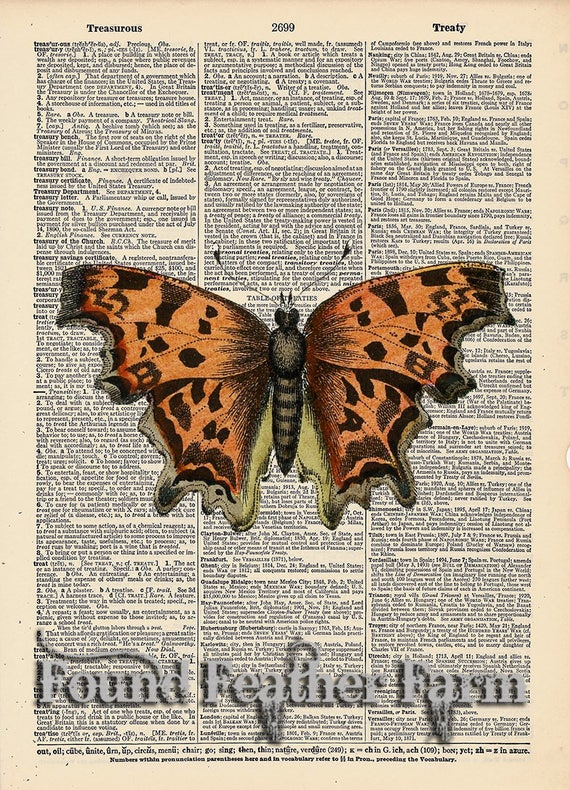 """Vintage Antique Dictionary Page with Antique Print """"Orange Butterfly"""""""