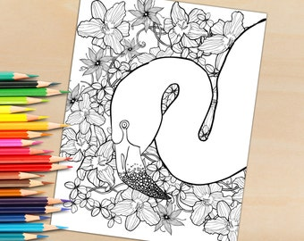 Adult Coloring Page From Coloring book, Flamingo For Coloring - Download To Print