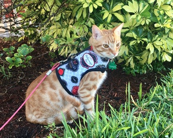 Kentucky Derby Dog/Cat Harness