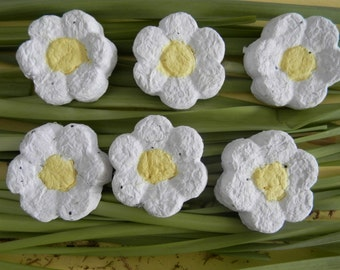 Seed Bomb Flower Shaped. Wedding favour, spring, baby shower, thank you gift, handmade paper