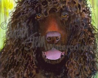 "Irish Water Spaniel, AKC Sporting, Hunting Water Gun Dog, Pet Portrait Dog Art Watercolor Painting Print, Wall Art, Home Decor, ""Wicca"""