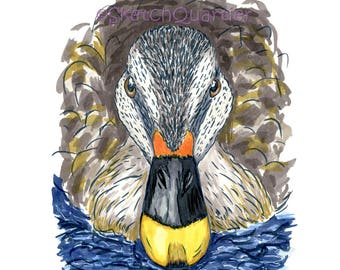 Hand Painted Duck digital clipart with transparent background for instant digital download.