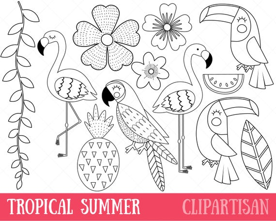 free coloring pages tropical birds - photo#29