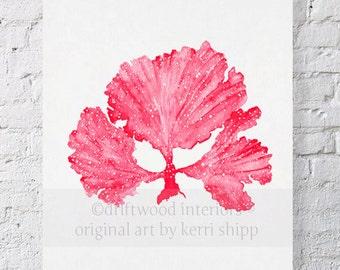 Seaweed II in Ruby Red Watercolor Print 11x14 - Sea Coral Art Print - Sea Fan Art Print - Coral art by Kerri Shipp