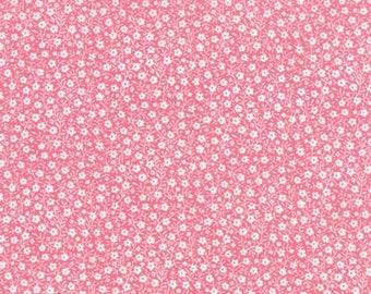 Sew Sew - Strawberry 33186.21
