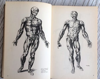 Anatomy for Artists by Reginald Marsh from the American Artist Group, New York, First Edition 1945. Hard back collectable vintage book.