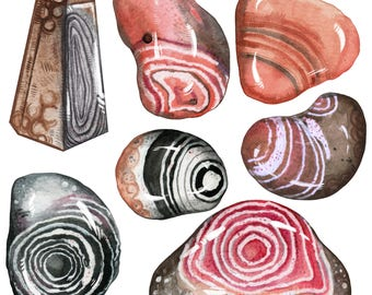 Pink and Earthy Botswana Agate Crystal Sticker Pack   Last Updated 12/17   Magical Stickers Hand Made with Love