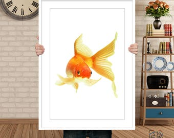 Fish Print, Gold Fish Print, Fish Wall Art, Kids Room Decor, Beach Decor, Fish Decor, Fish Poster, Coastal Wall Art, Fish