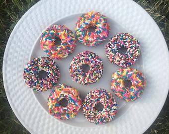 Rainbow Delicious Donuts Homemade Horse Treats