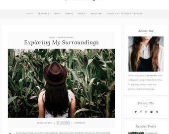 Premium wordpress responsive theme
