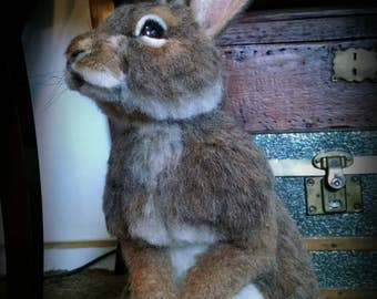 OOAK Needle felted Alpaca Life Size Cottontail Bunny Rabbit  Hare Poseable Artist Doll Bear Free Shipping Taxidermy Realistic