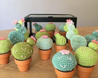 Cactus with flower crochet 8 cm to 12.5 cm