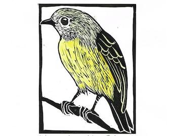 Linocut of an Eastern Yellow Robin with Hand Painted Water Colour, Australian Bird Print, Printmaking, Lino Print