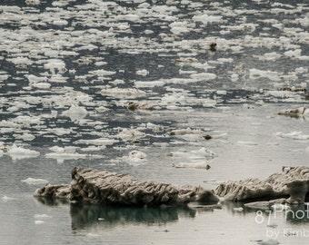Alaska Floating Iceberg
