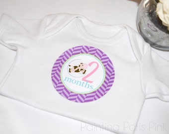 Hey Diddle Diddle Belly Babe Milestone Baby Stickers | 1st Year | BONUS Just Born Set included | Nursery Rhymes | FREE SHIPPING