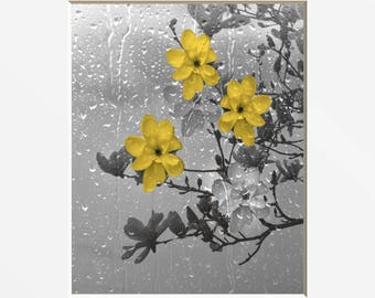 Yellow Gray Bathroom Wall Art, Yellow Flowers, Raindrops, Decorative Home Decor Wall Art Matted Picture