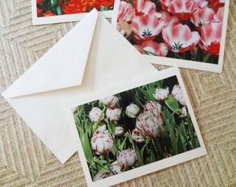 Set of 4 Botanical Photo Notecards (Blank)