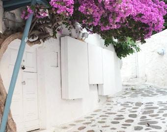 "Greece Photography - Bougainvillea Flowers - Whitewashed Street - White Pink Decor - Greece Wall Art ""Greece Flowers Two"""