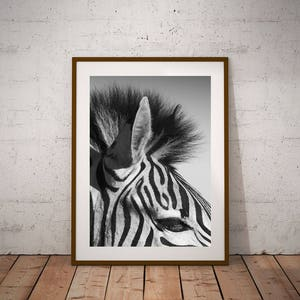 Zebra Art Zebra Decor Zebra Stripes Safari Animal Print Printable Zebra