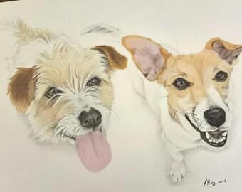 Custom Painted Pet Portrait, Two pets on same portrait A4