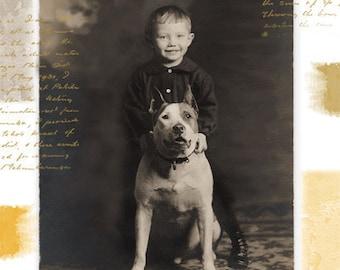 Pit Bull Dog Birthday Card Pittie