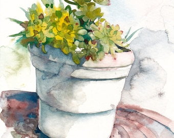 Succulent watercolor, Succulent art, Succulent painting, Botanical print - giclee print of an original watercolor (5 x 7 in)