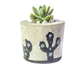 Mother's day, Mother's day gift ideas, Painted Concrete Planter, Concrete Planter, Succulent Plant Pot, Succulent Planter, Cement Planter