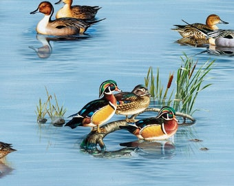 Water Fowl Fabric, Ducks, Geese - Cinthie Fisher for Elizabeth Studio - 7204 Blue - Priced by the half yard