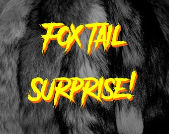 Fox Tail Surprise!  - A mystery fox in your mailbox!