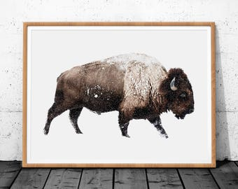 Bison Print, Animal Poster Print, Large Wall Art Print, Bison Digital Prints, Bison Poster Print, Buffalo Wall Art, Bison Wall Decor, Bison