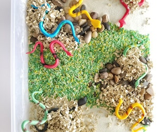 Snake Sensory Bin: Montessori, Reptiles, Play for Toddlers, Discovery Learning, Sensory Play Lesson, Pretend Play, Snake Theme