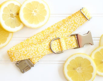 Summer Dog Collar,  Lemon Dog Collar, Yellow, Lemonade Dog Collar, Female, Male, Pet Collar with Metal Buckle, Puppy