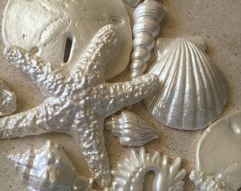Sugar Seashells, Sand Dollars, Starfish, Edible Seashells, Beach Wedding