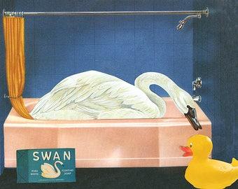Bird bath. Limited edition collage print byVivienne Strauss.
