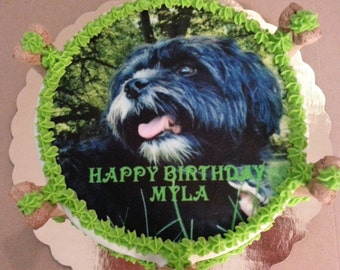 "6"" Sugar free photo image dog cake"