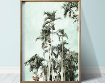 Photography Print Palm Tree Wall Art Palm Tree Print Palm Tree Art Tropical Print Tropical Wall Art Tropical Art Print