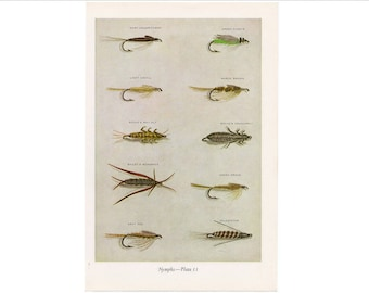c. 1963 - NYMPHS - FLY FISHING lithograph - original vintage print - fresh water fishing angling - trout salmon bass bait - fly tying flies
