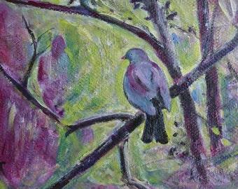 Colourful bird painting, original art to frame, bird in tree, 'Kereru Morning' NZ bird art, New Zealand art, NZ native bird painting