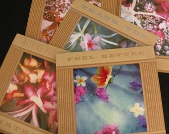 "Set of 3 ""Florabunda"" Cards"