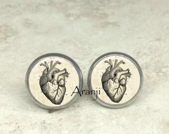 Victorian heart earrings, heart earrings, anatomical heart earrings, heart anatomy earrings, heart studs, heart jewelry, heart, AN214E
